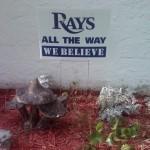 Rays2